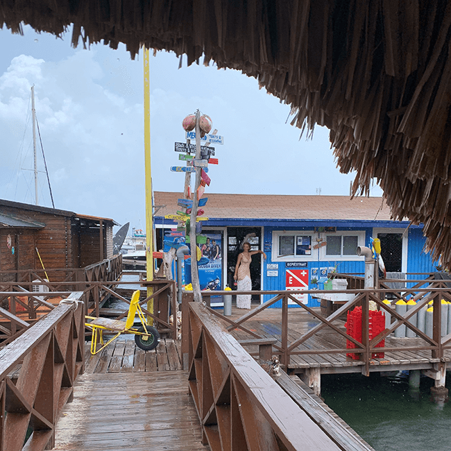 CURious 2 DIVE is the only eco-dive center located in Curacao.